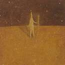 Yusaku Munakata image