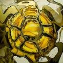 Goncharova Zlata image