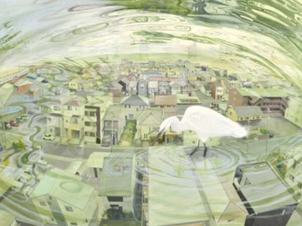 Hitomi Fujikawa image