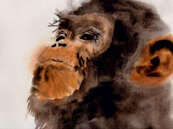 Maya Ogata image