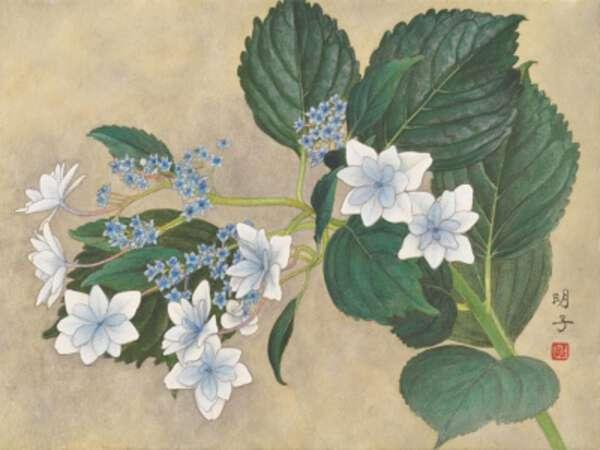 Akiko Fukunaga image