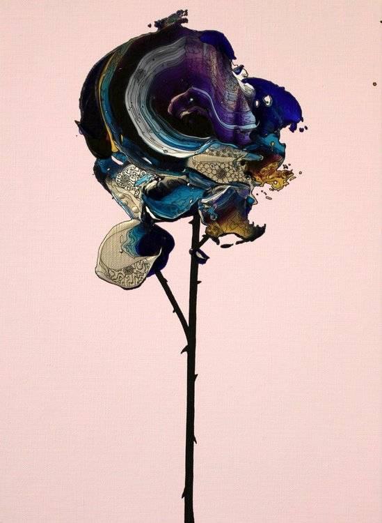 Purple Rose (Pink x Purple)
