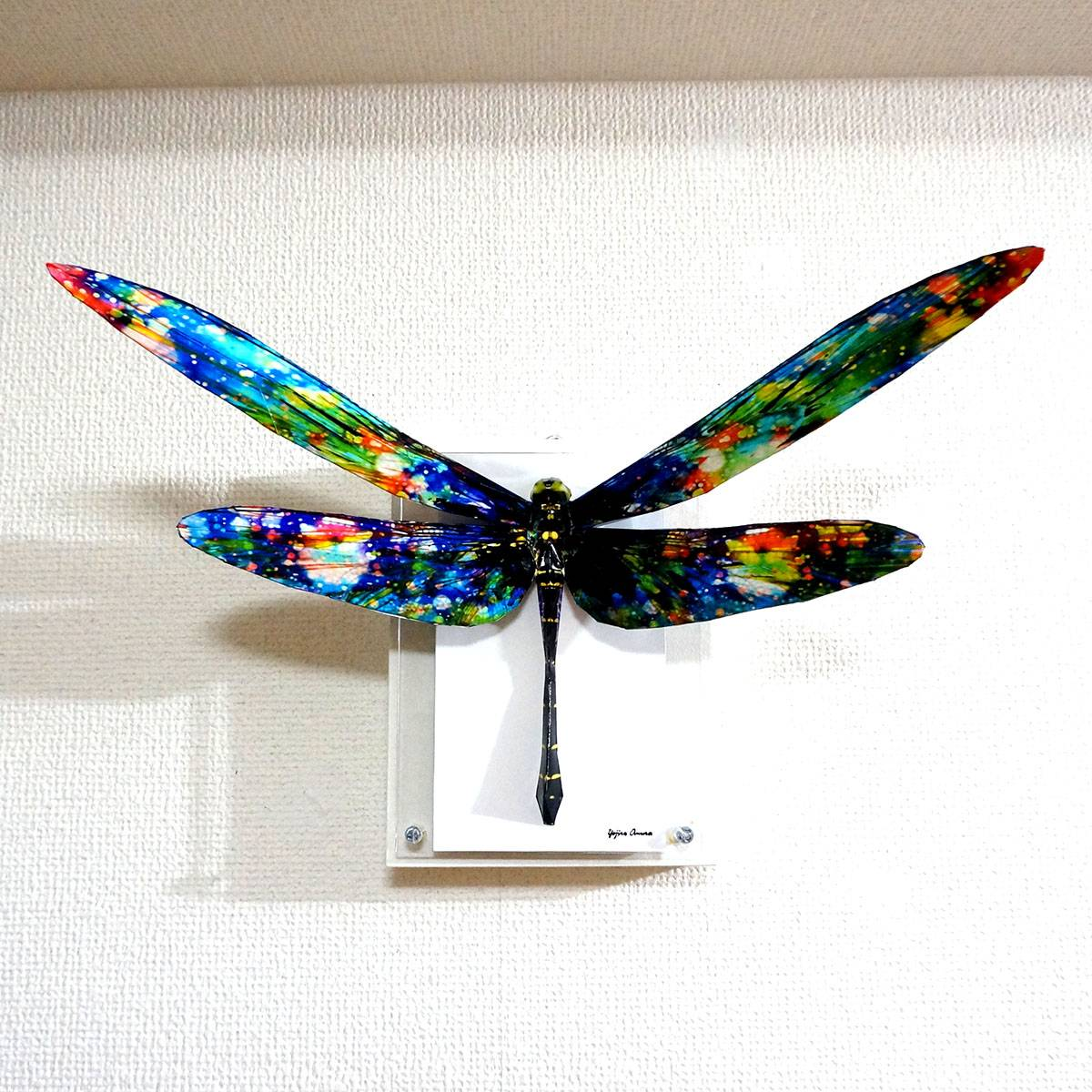 The glittering dragonfly spreads its wings ED:8/10