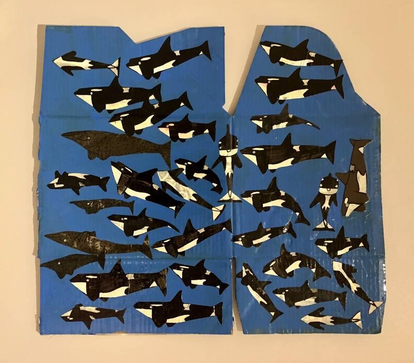 カリフォルニア湾のオプショアシャチとコククジラ