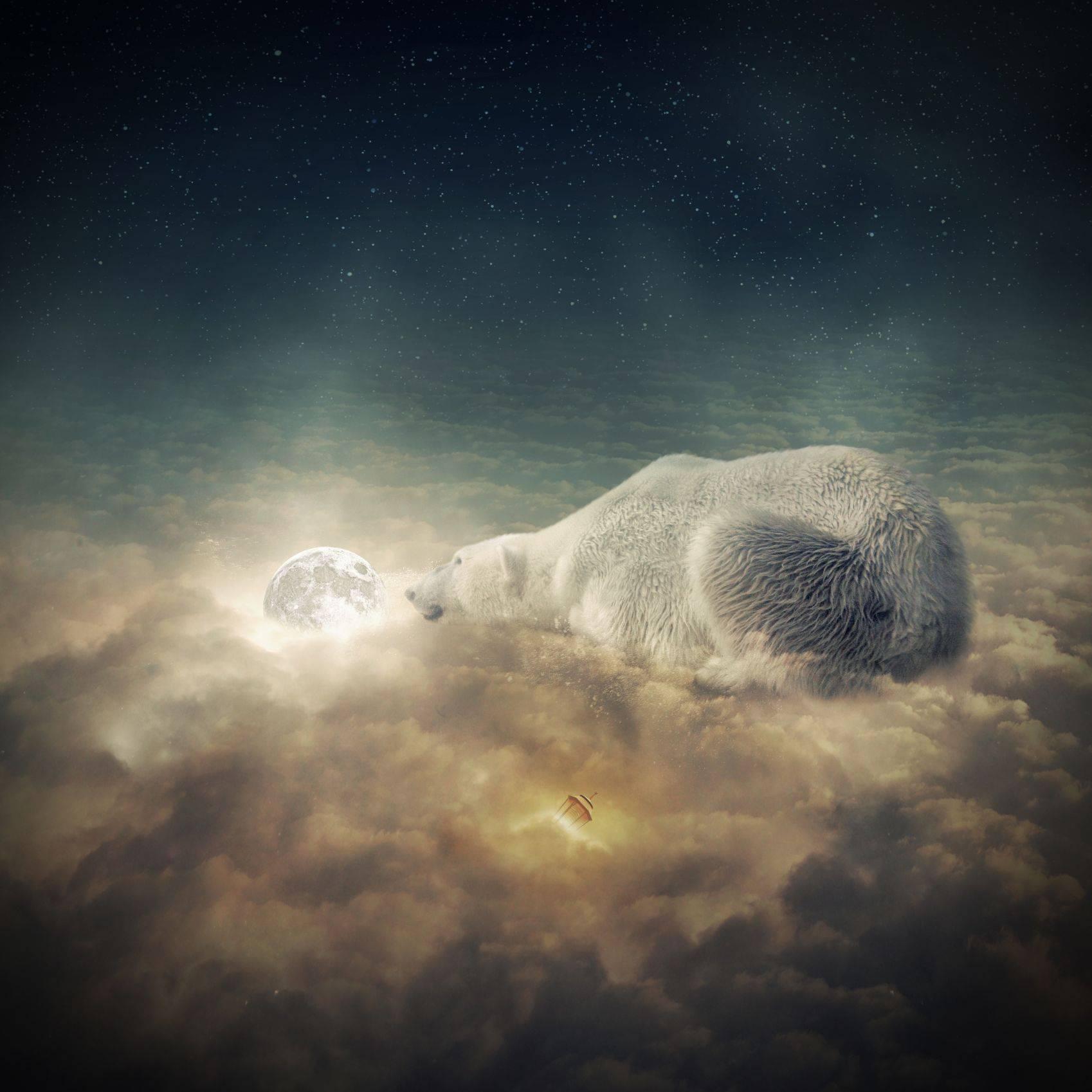 Polar and moon