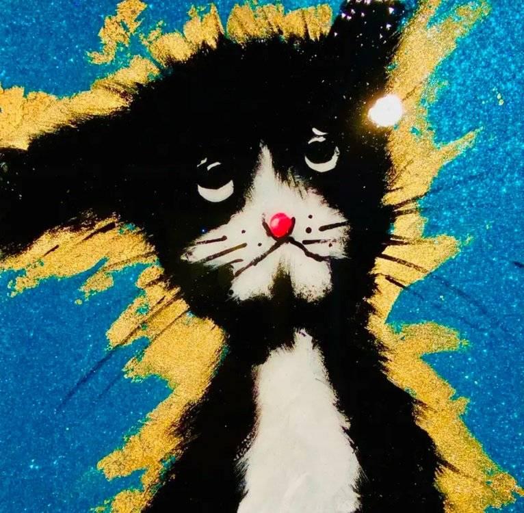 CRAZY TURQUOIS CAT