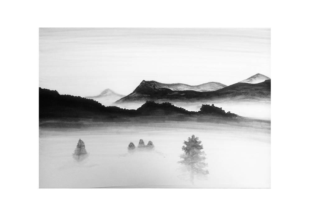 """Black & White """"Im Nebel/In the fog"""""""