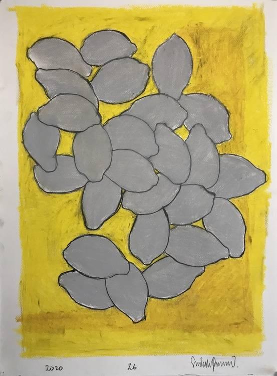 26 Lemons