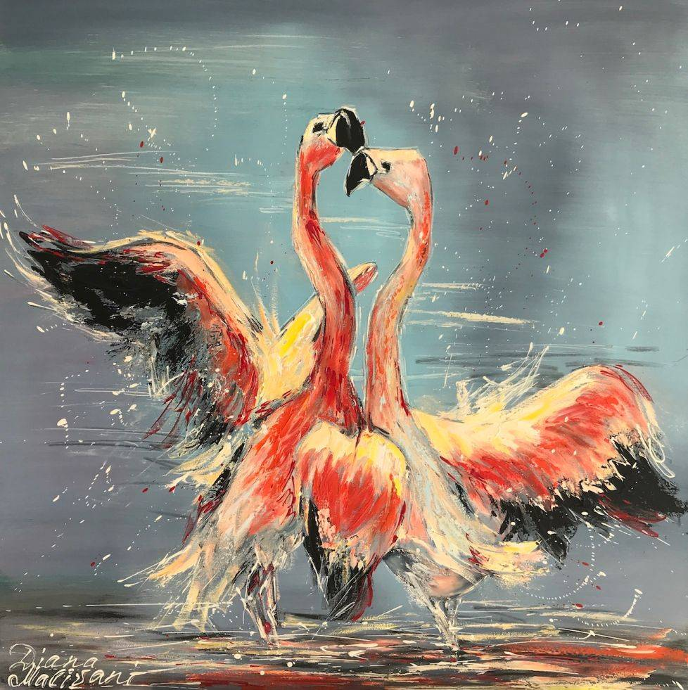 Dance of Pink Flamingoe