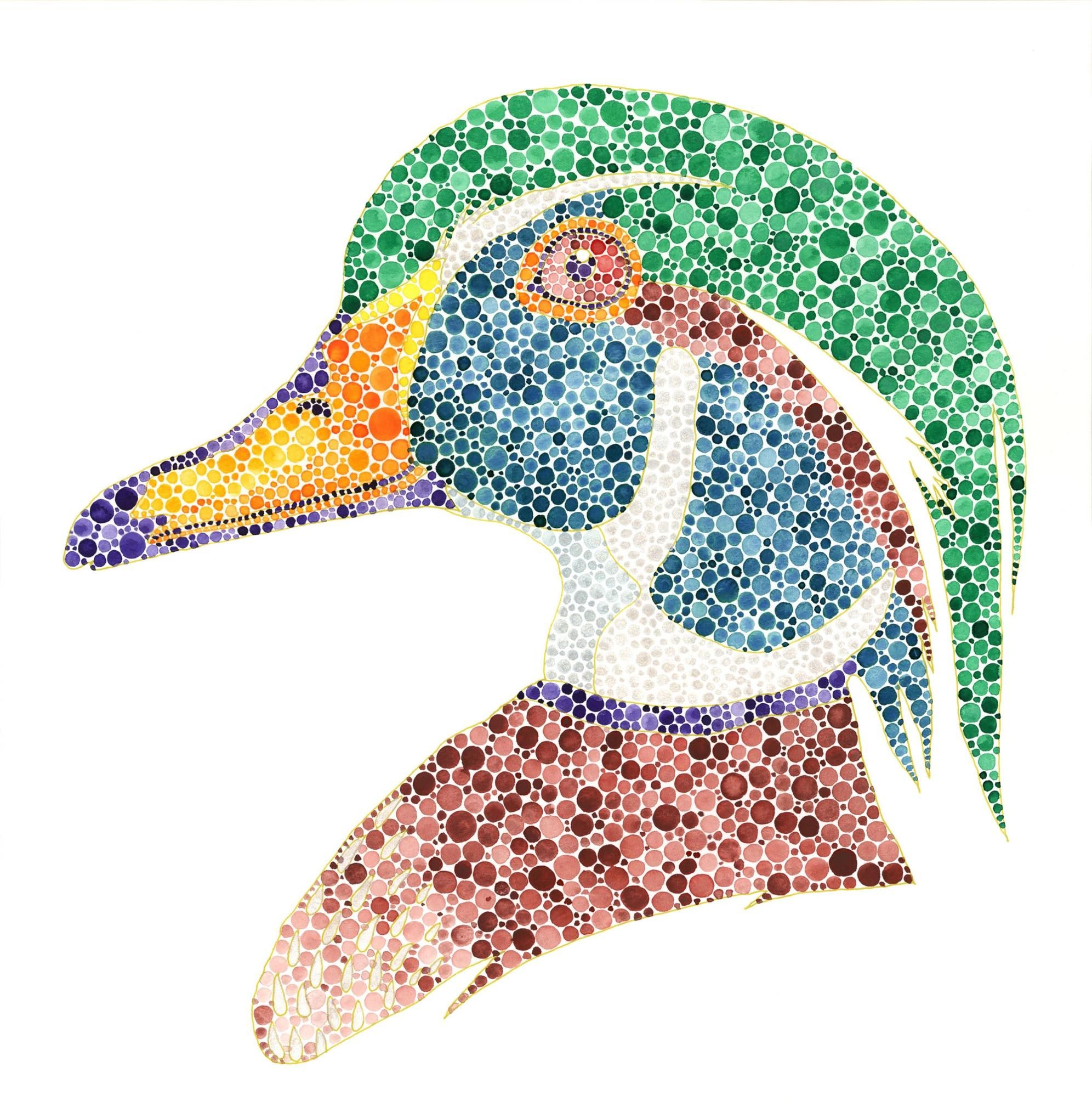 duck #1