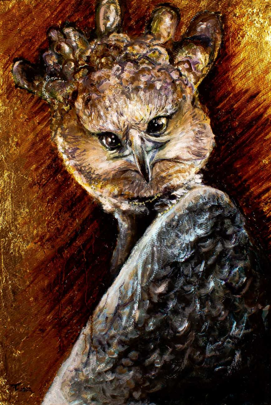 A harpy eagle Image of your art work hanging on the wall