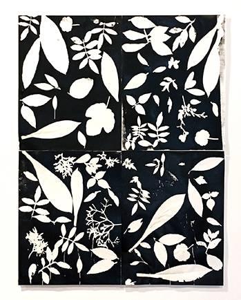 Beauty in Kimonos