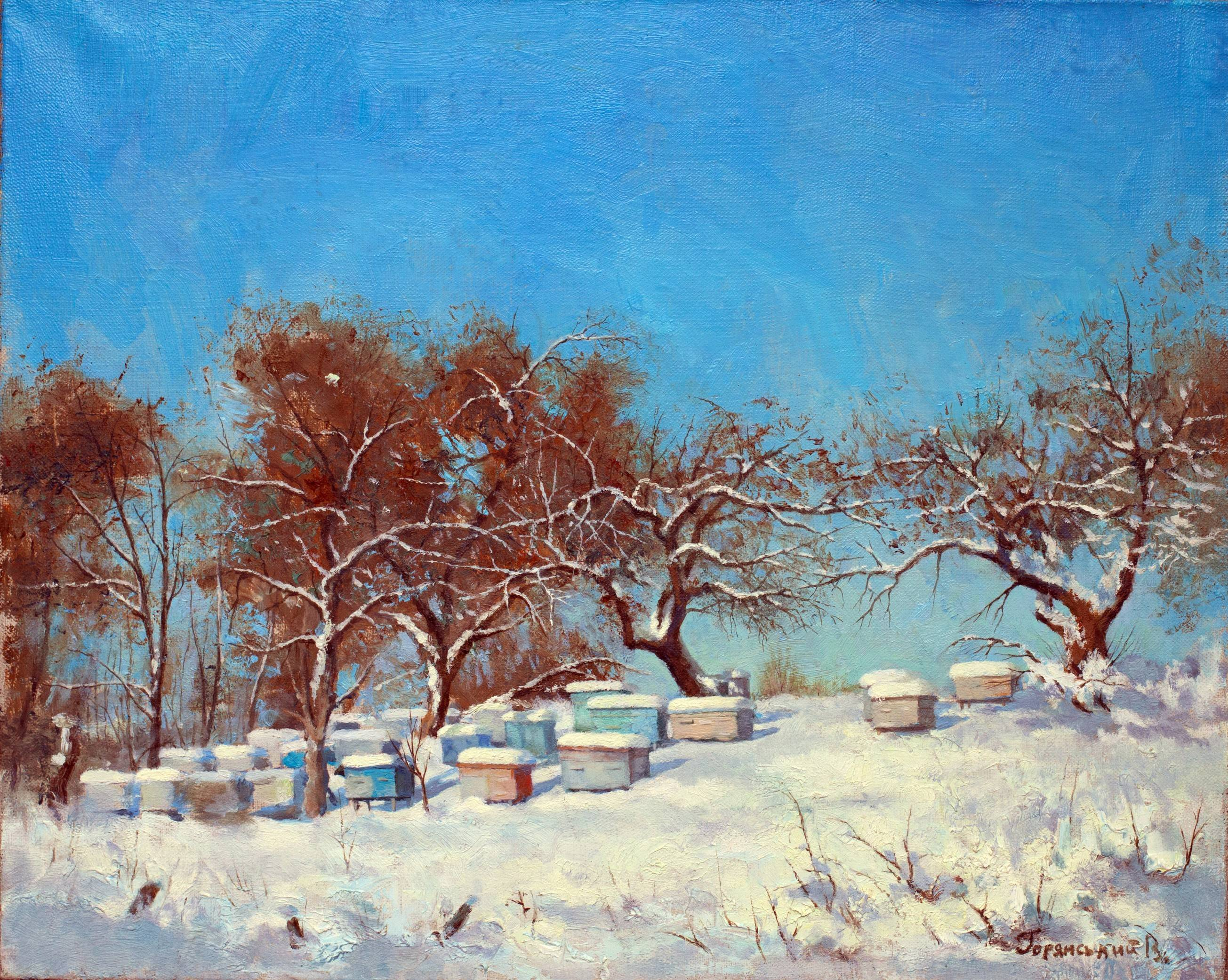 snow covered beehives