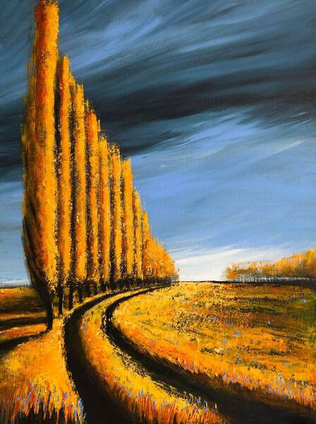 POPLARS AND THE STORM