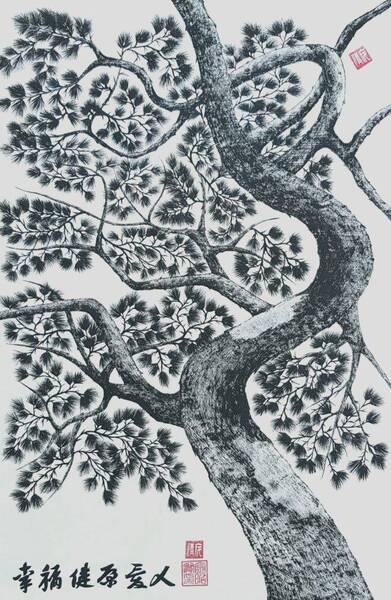 pine tree3