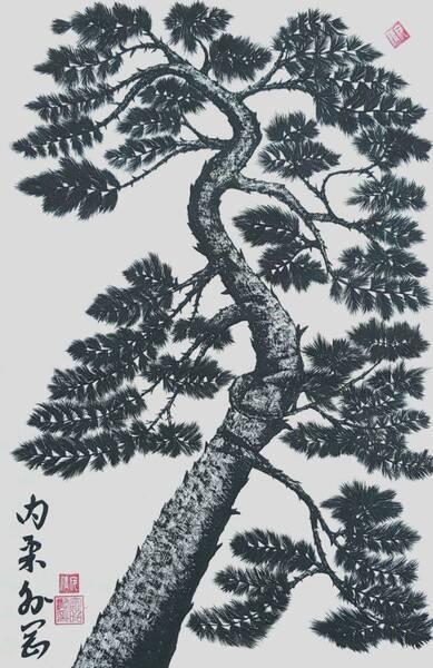 pine tree4