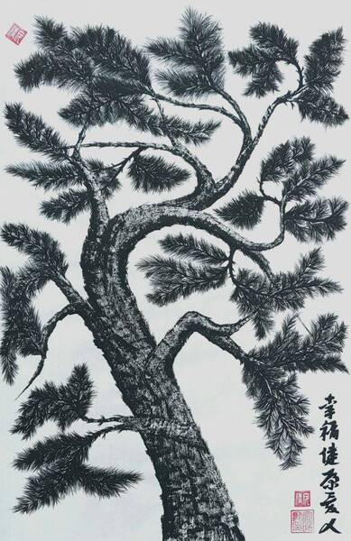 pine tree5