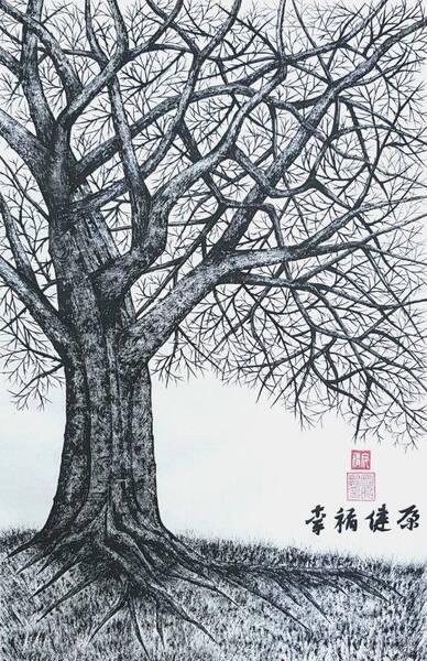 deep-rooted tree1