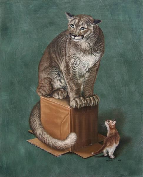 고양잇과 03 (Felidae 03)