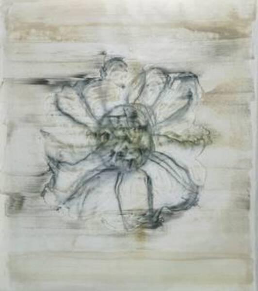 Drawing a Zinnia - #1414