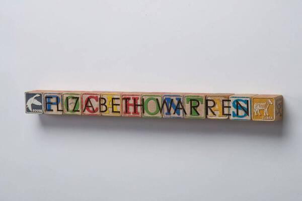 DJT Alphabet Blocks: Elizabeth Warren