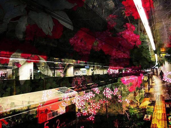 Flower labyrinth