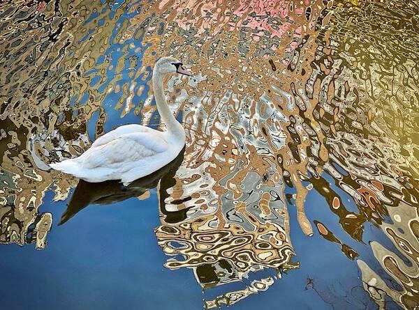 Klimt Swan - Oudezijds Voorburgwal