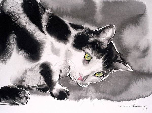 Cat Curiosity2