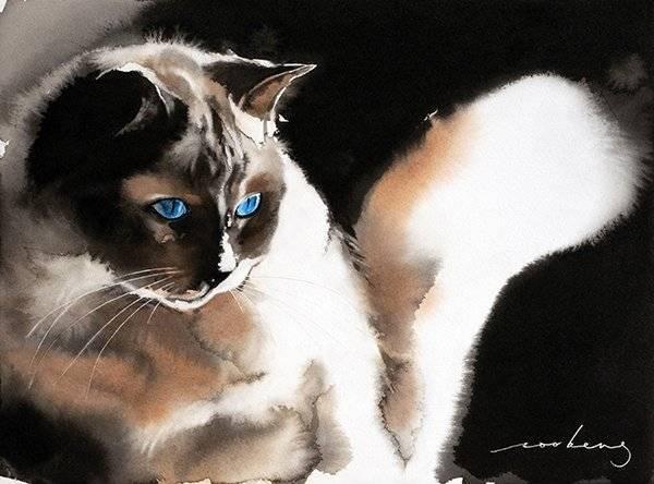 Cat of Night
