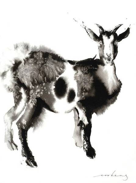 Goat Stance