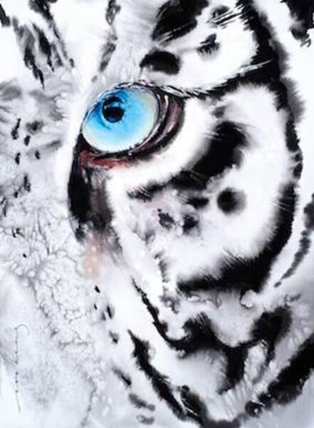 Tiger Look2