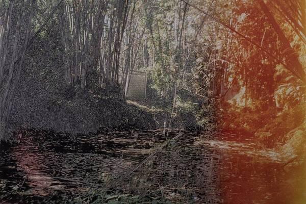 The Pond of Asylum no.3