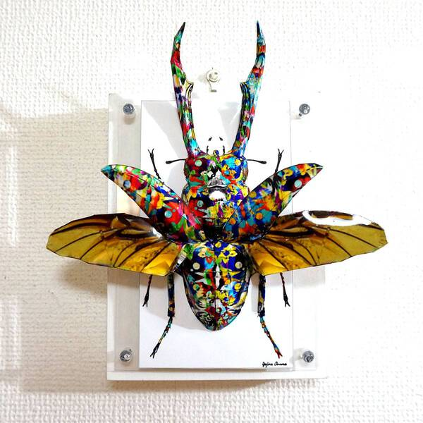 Psychedelic stag beetle spreads its wings ED:6/10