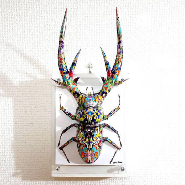 The psychedelic stag beetle spreads its sharp horns ED:4/10