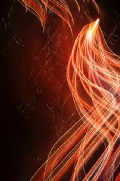 Firebird#2