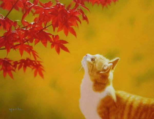 Colour of autumn