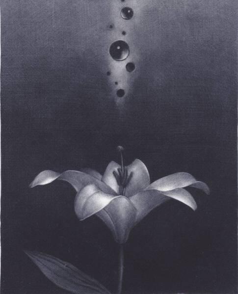Flowering '16 -B