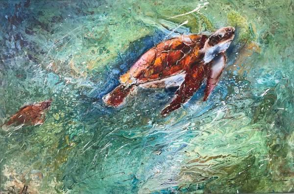 The Sea Turtles