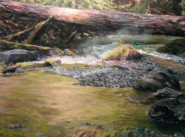 Meadow Creek Pool