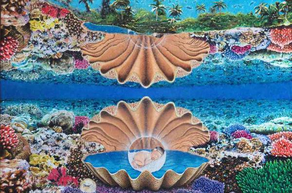 'Dreams on the reef''