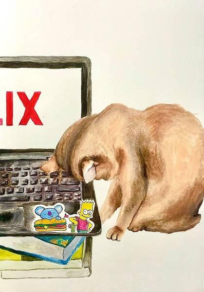 Netflix No Chill