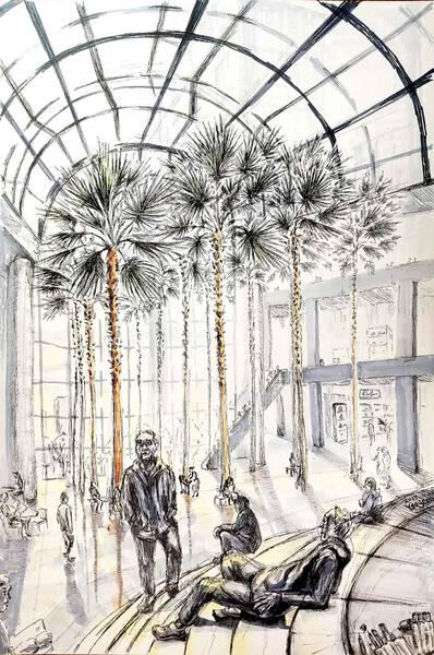 Palm Trees in Winter Garden
