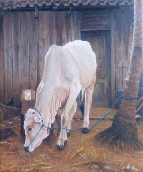 The Cow at The Villager
