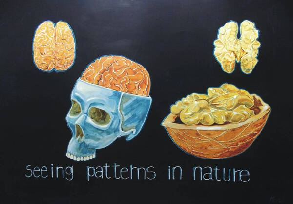 Seeing Patterns in Nature