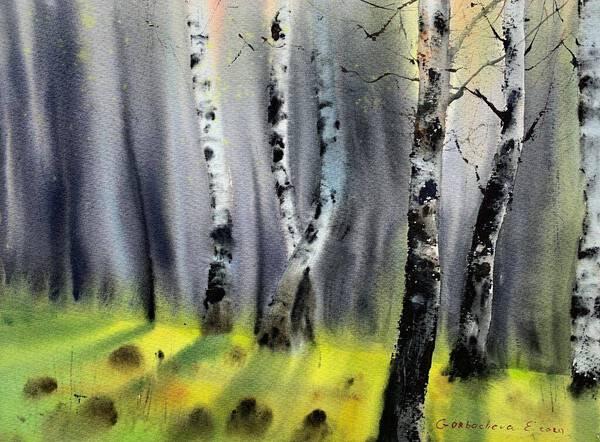 Birch Grove #2