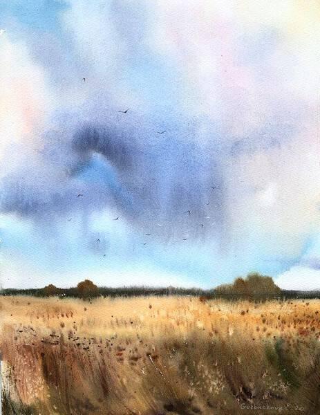 Rye field and rain