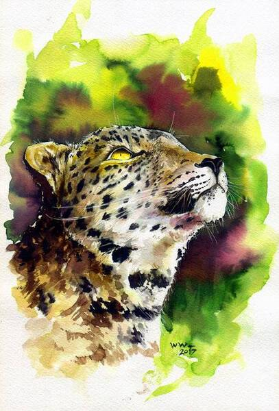 Thinking Future Cheetah
