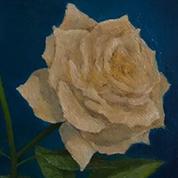 (flower) vase and (flower) vase