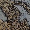Stampa xilografica/woodblock